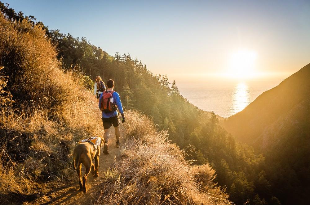couple and dog hiking