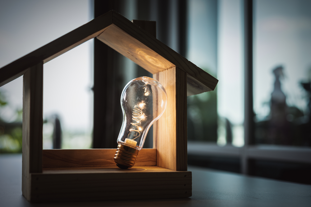 light bulb in small wooden house