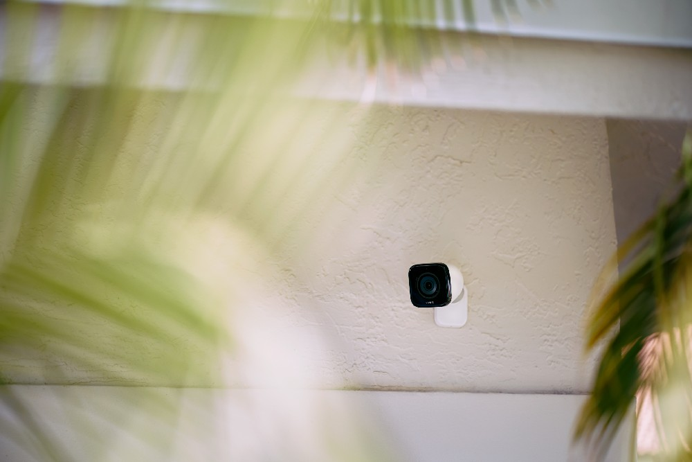 outdoor camera on house through palm trees